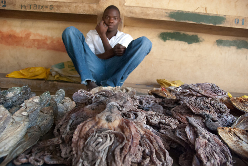 """<span id=""""title"""">Dried Octopus</span> So much dried octopus! I couldn't believe it."""