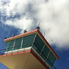 "<span id=""title"">Air Traffic Control</span> Pemba's airport tower is small, like the airport itself.  There was a pretty specific reason we stayed in Pemba for 7 days. It was either that or 4 days, because Saturday and Wednesday were the only days the airline flew there from Johannesburg."
