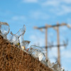 """<span id=""""title"""">Cheap Security</span> What do you do if you can't afford a real security fence? Cement broken glass into the top of your wall, obviously. What happens if they decide they don't want it?"""