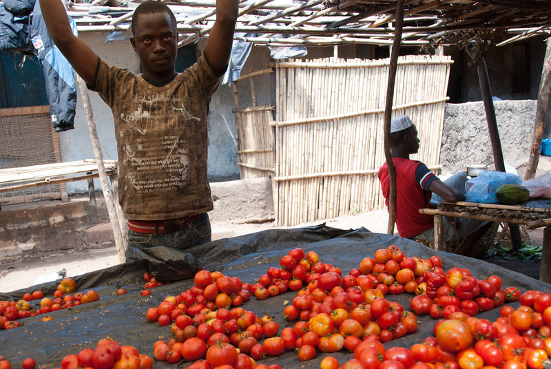 """<span id=""""title"""">Tomatoes</span> Tomato vendor in Banguia market. His shirt has some sort of poem related to the apocalypse. I tried searching for it online, but got no hits."""