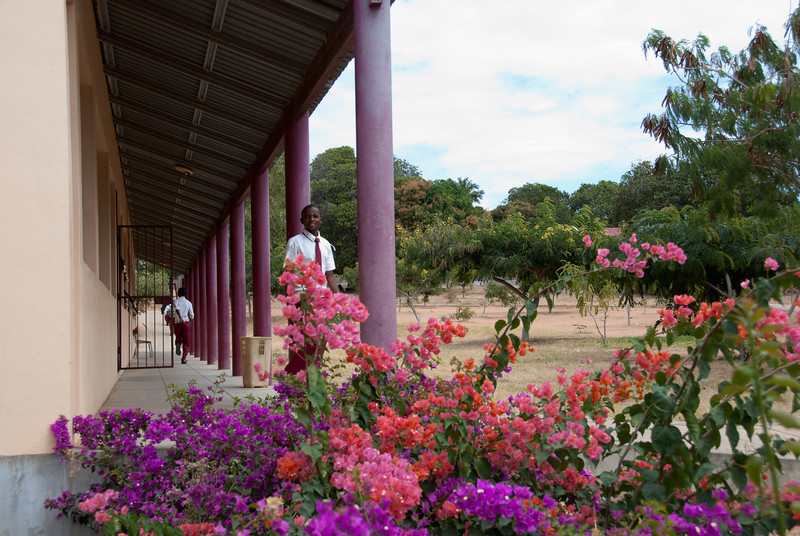 """<span id=""""title"""">School Grounds</span> The school grounds were beautiful. Rarely did we see any other buildings or houses with real landscaping."""