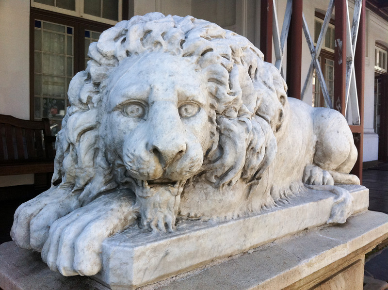 "<span id=""title"">Lion</span> <em>Paul Kruger House, Pretoria</em> Rawr!"
