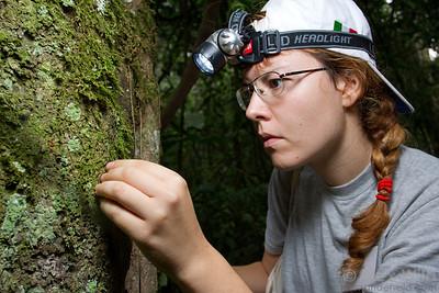 Ilaria Toni (Centro Nazionale per lo Studio e la Conservazione della Biodiversità Forestale, Italy) at Ant Course 2012 in Uganda.