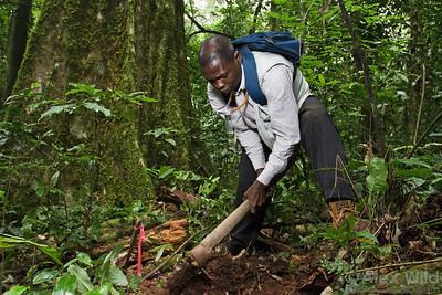 Kolo Yéo (Université d'Abobo Adjamé, Côte d'Ivoire), digs a trench to collect soil-dwelling ants at Ant Course 2012 in Uganda.