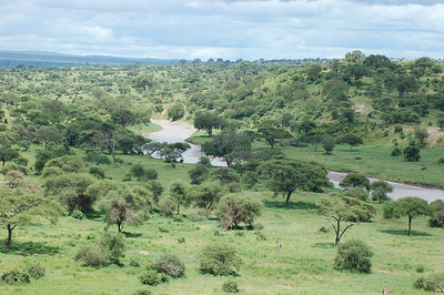 View from Tarangire Lodge