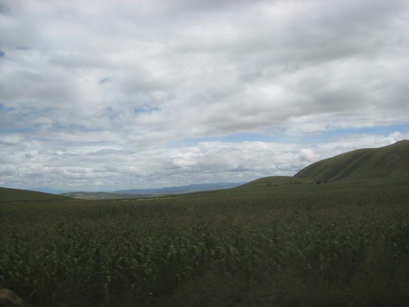 Drive to Nairobi 6
