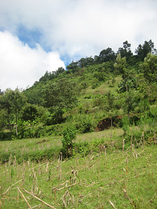D16 Mt meru countryside