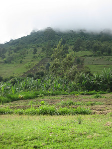 D16 Mt Meru countryside 1
