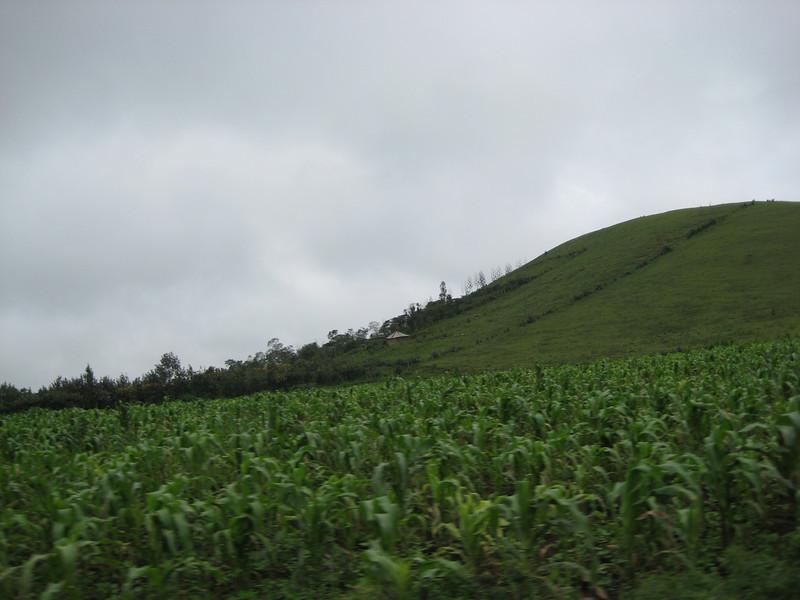 Drive to Nairobi