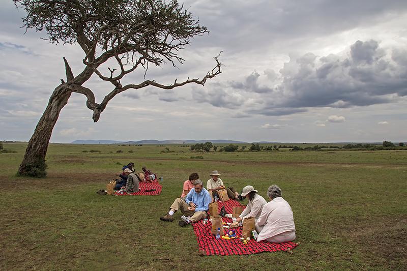 Picnic on the Maasai Mara