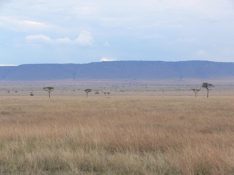 The Maasai plain