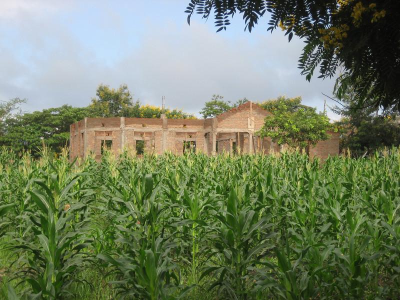 D4 building