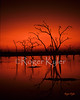 kariba sunset scn64