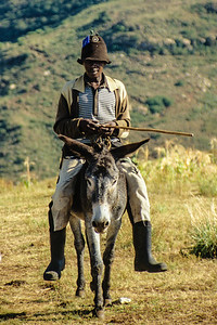 Man on a pony in Lesotho In the mountainous Lesotho, ponies are the majot form of transport.