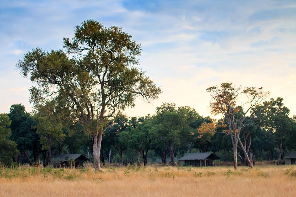 Davison's Camp, Hwange