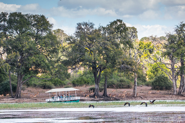 Chobe National Park Botswana, June 2017