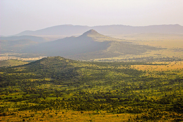 The Serengeti March 2012 Featured in the Thomson Safaris 2013 brochure