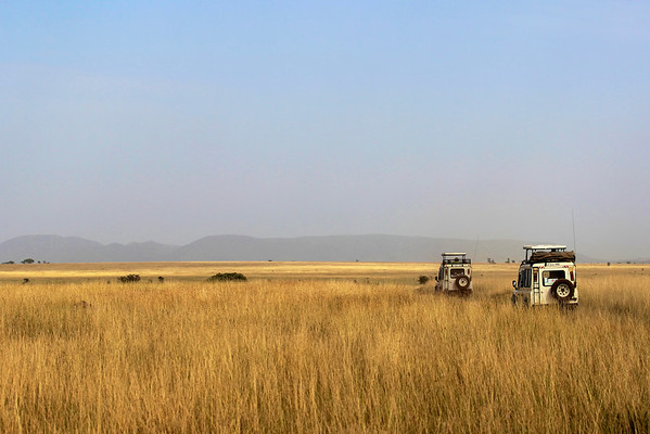 The Serengeti, Tanzania March 2012  Featured in the Thomson Safaris 2013 Mount Kilimanjaro Expeditions brochure