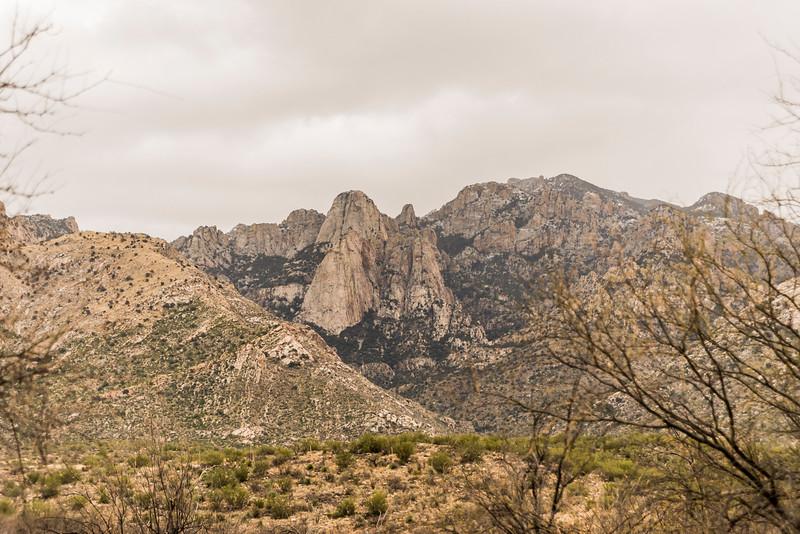 1027_Tucson_Saguaro_Gilbert_Ray