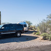 1042_Tucson_Saguaro_Gilbert_Ray