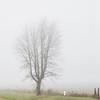 058Airstream_Life_Illinois_Iowa