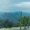 1025_Tucson_Saguaro_Gilbert_Ray