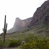 1017_Tucson_Saguaro_Gilbert_Ray