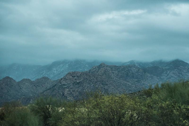 1023_Tucson_Saguaro_Gilbert_Ray