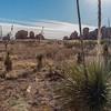 1110_New_Mexico_City_of_Rocks
