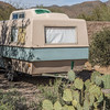 1048_Tucson_Saguaro_Gilbert_Ray