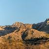 1028_Tucson_Saguaro_Gilbert_Ray