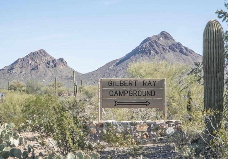 1057_Tucson_Saguaro_Gilbert_Ray