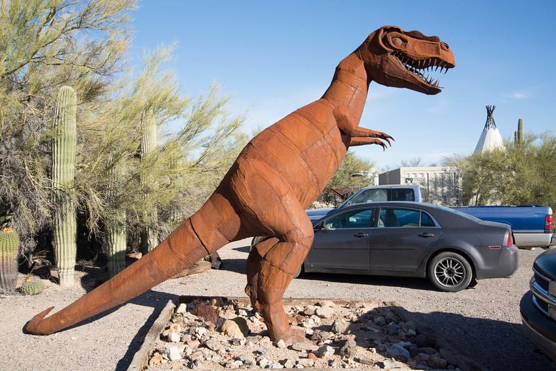 1052_Tucson_Saguaro_Gilbert_Ray