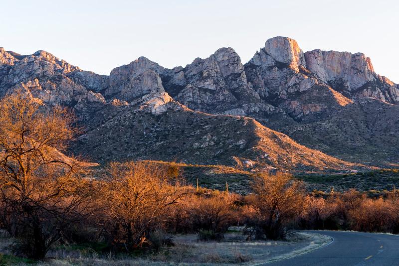 1034_Tucson_Saguaro_Gilbert_Ray