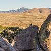 1136_New_Mexico_City_of_Rocks