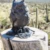 1066_Tucson_Saguaro_Gilbert_Ray