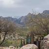 1022_Tucson_Saguaro_Gilbert_Ray