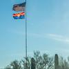 1056_Tucson_Saguaro_Gilbert_Ray