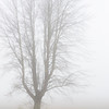 060Airstream_Life_Illinois_Iowa
