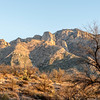 1030_Tucson_Saguaro_Gilbert_Ray