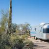 1041_Tucson_Saguaro_Gilbert_Ray