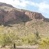 1013_Tucson_Saguaro_Gilbert_Ray