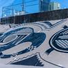 1103_New_Mexico_City_of_Rocks