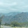 1026_Tucson_Saguaro_Gilbert_Ray