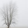 059Airstream_Life_Illinois_Iowa