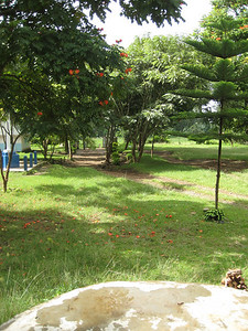 D5 Akeri Parish Grounds