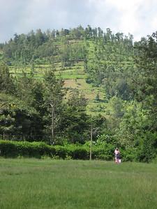 D5 Akeri Countryside 2