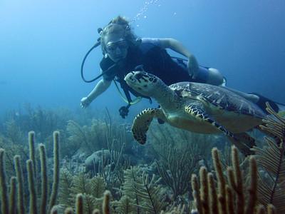 Akumal Dive Photos Dec 2013