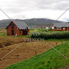 Farm houses near Akureyri in Northern Iceland.