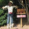 Huntsville, AL - Botanical Garden - Scarecrow Trail